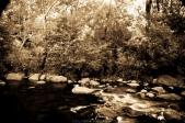 Oak Creek Canyon 1